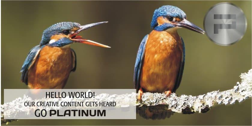 PLATINUM-006